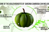 Comparing GarciniaCambogia Vibe and Pure Asian Garcinia – Which one is more effective?