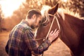 Equine Therapy: A Different Approach to Addiction Recovery