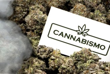 But Weed Online? Cannabismo makes it possible